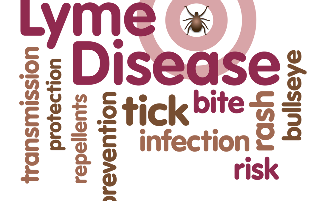 Tick-Borne Diseases and Your Pet
